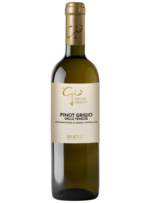 Pinot Grigio delle Venezie Linea Gio
