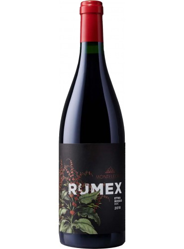 Rumex